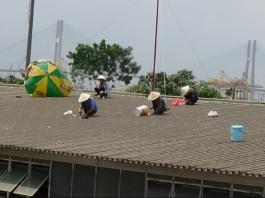 Thợ chống dột mái tôn tại tphcm