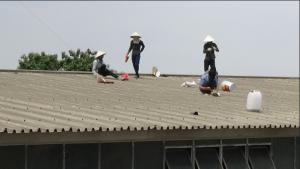 Thợ chống dột mái tôn tại quận 4