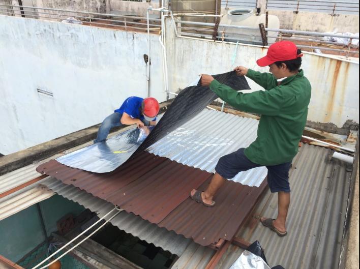 Thợ sửa mái tôn tại quận 12 – chống thấm dột giá rẻ